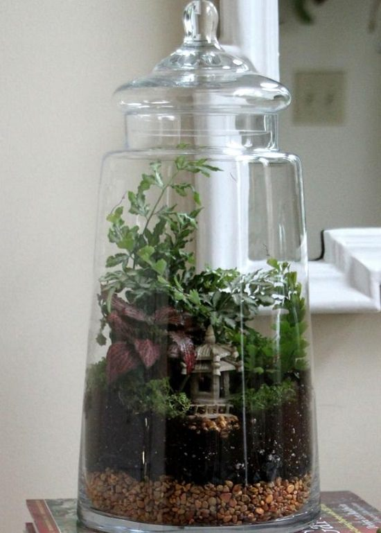 DIY Closed Terrarium Ideas 3