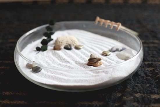 Adorable Mini Zen Garden