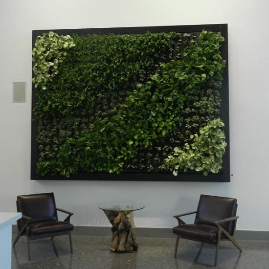 How to Create a Living Wall at Home