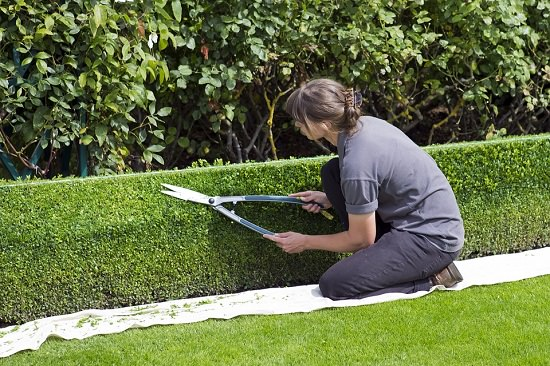 Exercises From Gardening 2