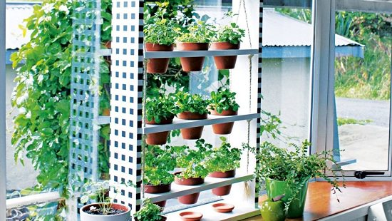 vertical garden projects