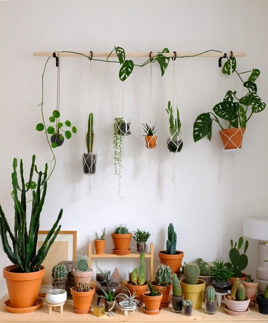 Diy Home Decor Ideas That Anyone Can Do: 16 DIY Indoor Plant Wall Projects Anyone Can Do