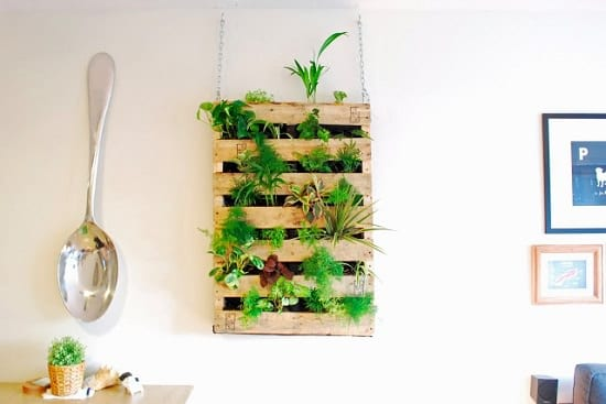This Diy Living Wall Indoor Worths Some Of Your Time And Efforts You Just Need A Pallet Other Usual Supplies