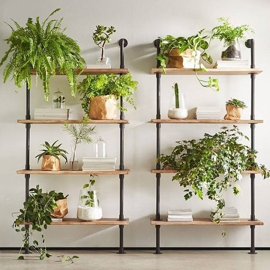 Indoor Plant Wall Garden On Floating Shelves