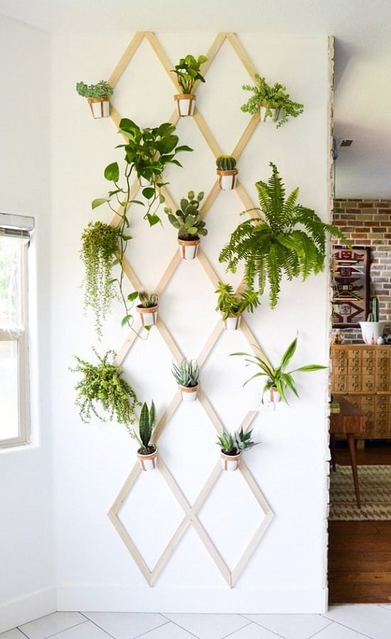 16 Diy Indoor Plant Wall Projects