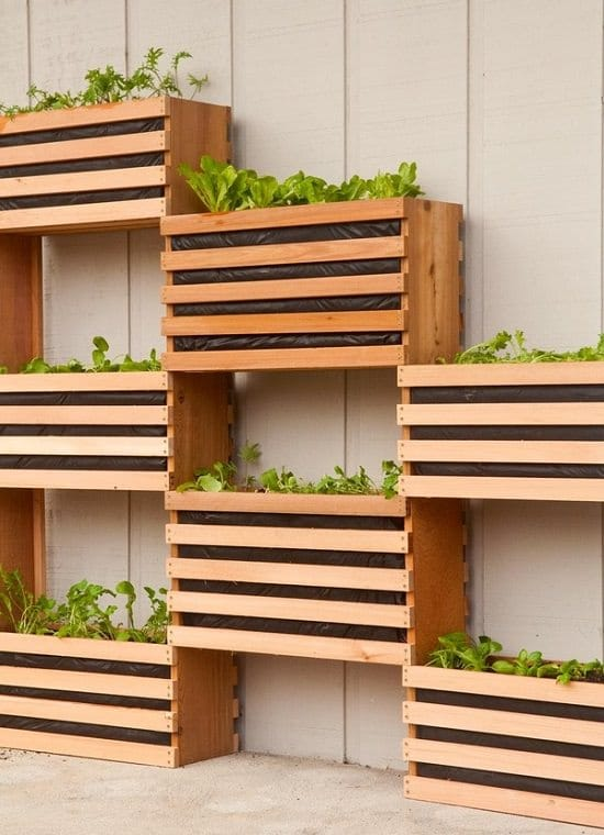 16 Diy Indoor Plant Wall Projects Anyone Can Do Living Wall Ideas