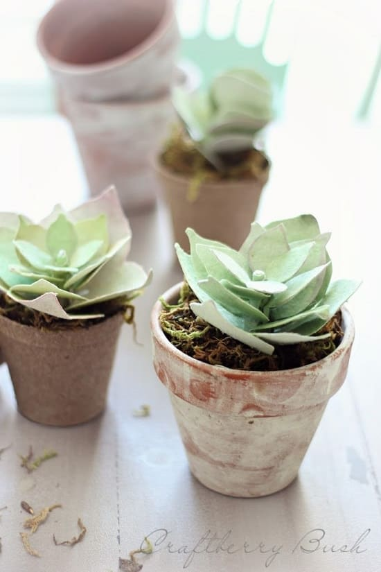 Paper Succulents in Aged Pots