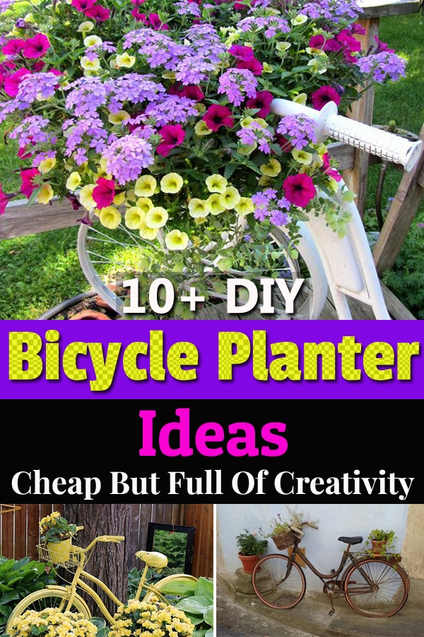 Old bicycles are cheap and easy to find, get one or a few and install them on your entryway or garden with some creativity.