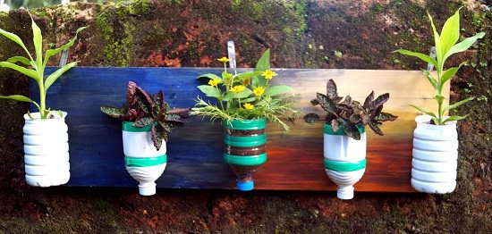 Make this DIY Plastic Bottle Vertical Garden out of empty plastic bottles to grow ornamental plants and succulents.