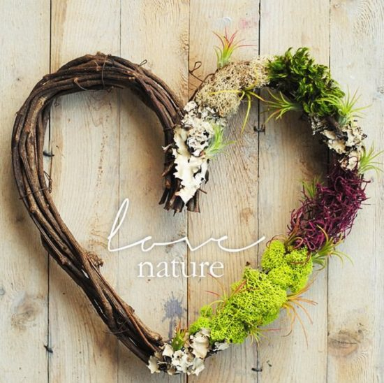 diy air plant wreath ideas