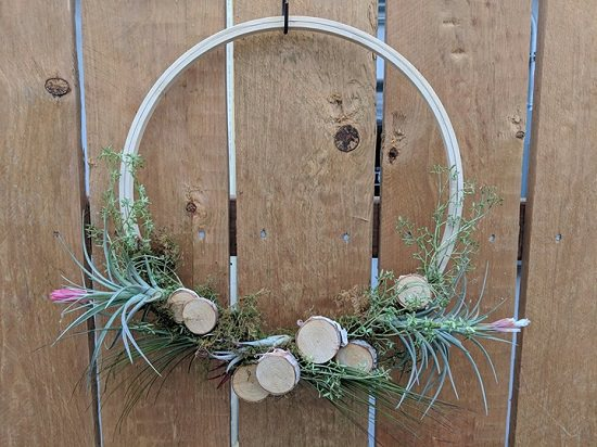 These DIY Air Plant Wreath Ideas are super easy to complete and extremely low maintenance!