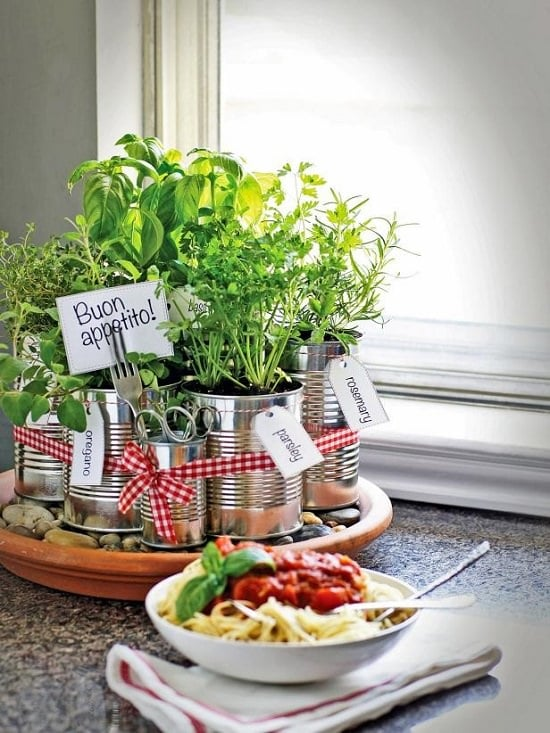 diy window herb garden on kitchen countertop