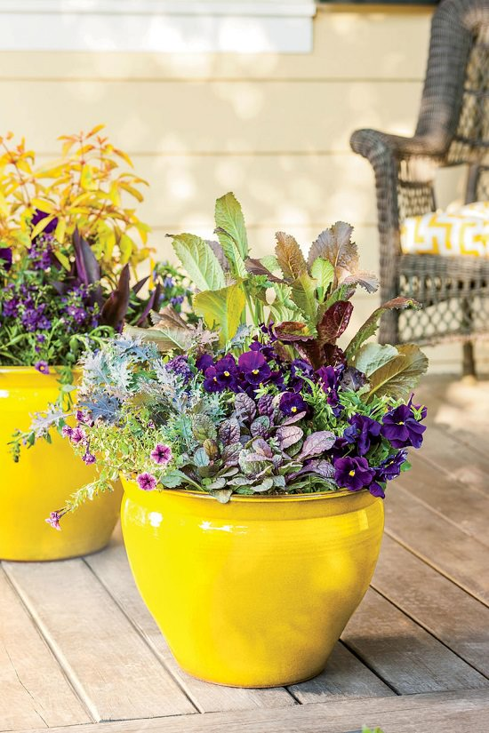 container gardening questions and answers