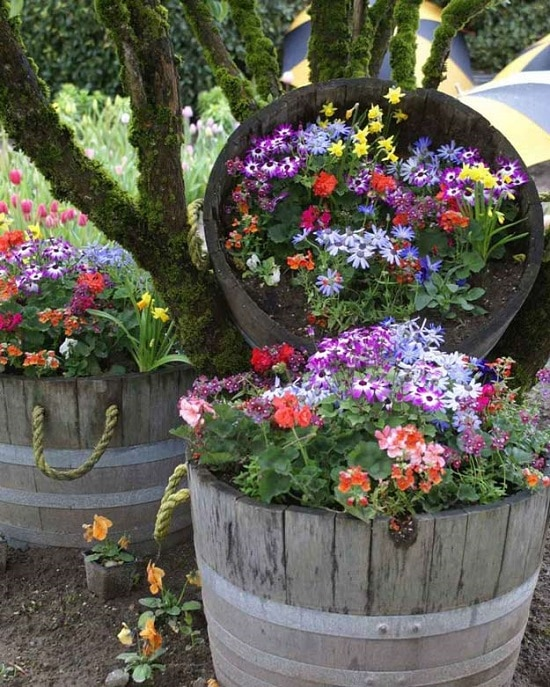 Diy Balcony Garden Ideas: 17 Ingeniously Creative DIY Wine Barrel Ideas For Garden