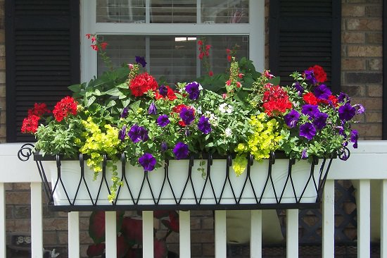 Create Beautiful Flower Bo And Display Them On Railings Hold The Window Using Brackets Or Metal Shelves