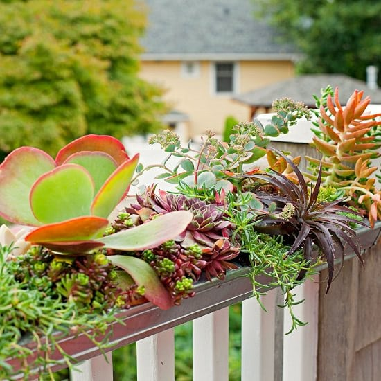 These DIY Railing Planter Ideas can create more space and provide visual interest to your balcony garden.