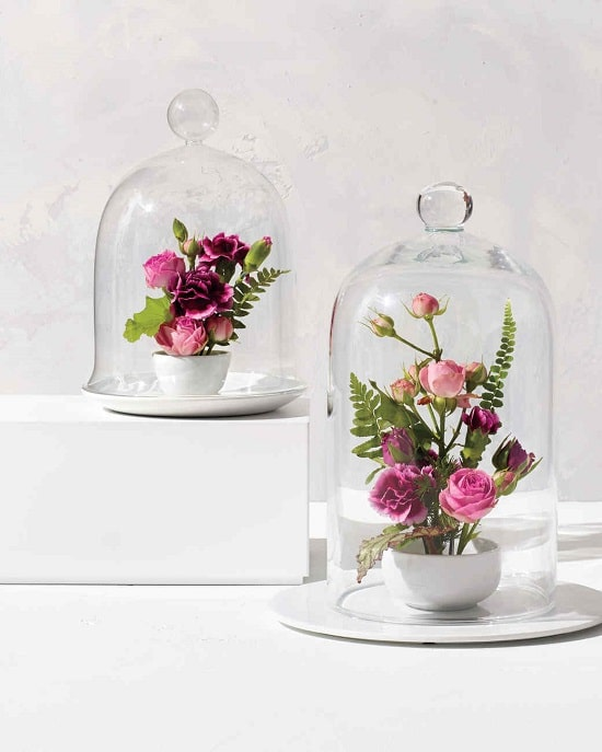 DIY Garden Cloche Ideas 4
