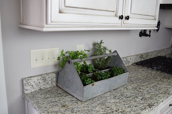 DIY Countertop herb Garden