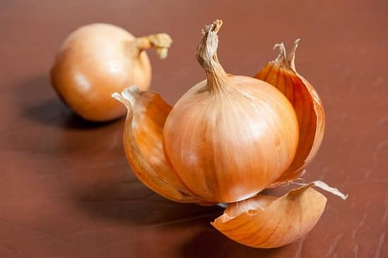 onion skin benefits