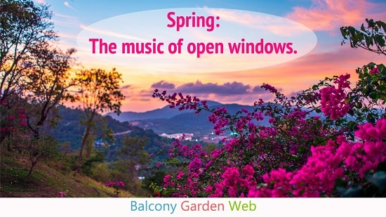 30 Amazing Spring Quotes For Gardeners