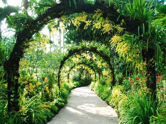 If you're a plant aficionado, add these Best Botanical Gardens in the world in your travel list, many of them are World Heritage Sites and you'll not be disappointed.