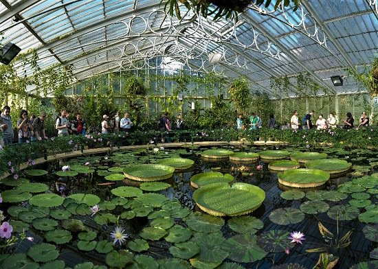 Best Botanical Gardens in the world