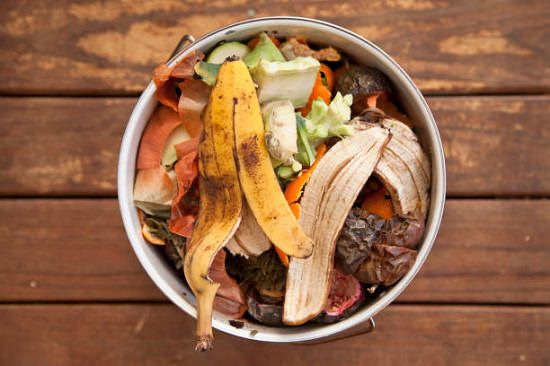 How to Start Composting in an Apartment Balcony