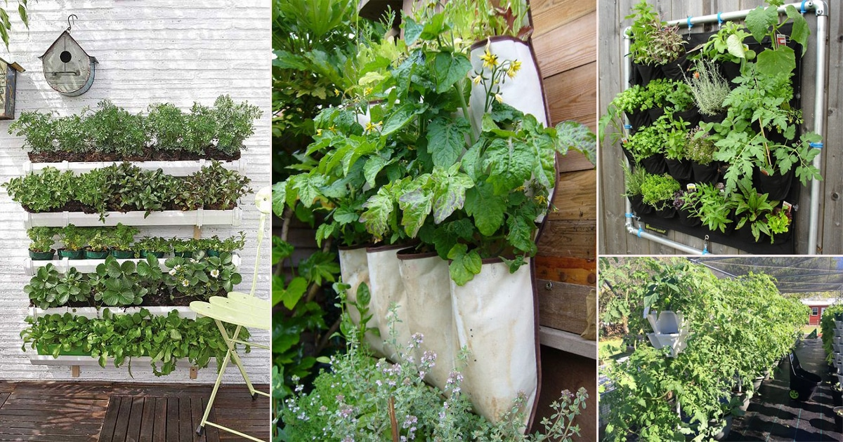 12 DIY Vertical Vegetable Garden Ideas To Grow More Food