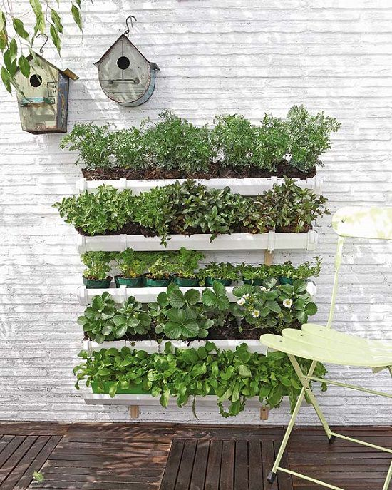 Follow these DIY Vertical Vegetable Garden Ideas to grow more food in the same limited space you already had!