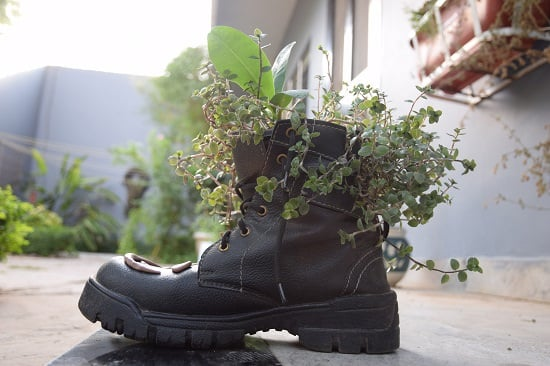 You won't believe your old pair of shoes could be that useful in the garden unless you see these DIY Shoe Hacks we've here!