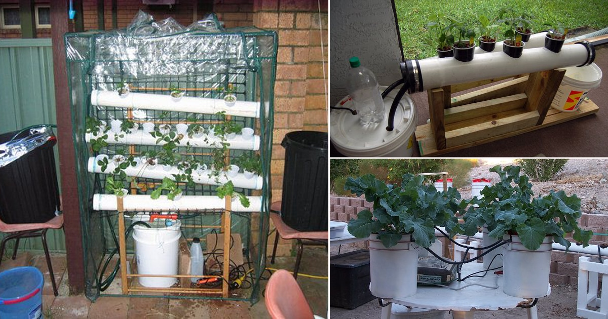 17 Homemade Hydroponic Systems Diy Hydroponic Gardens