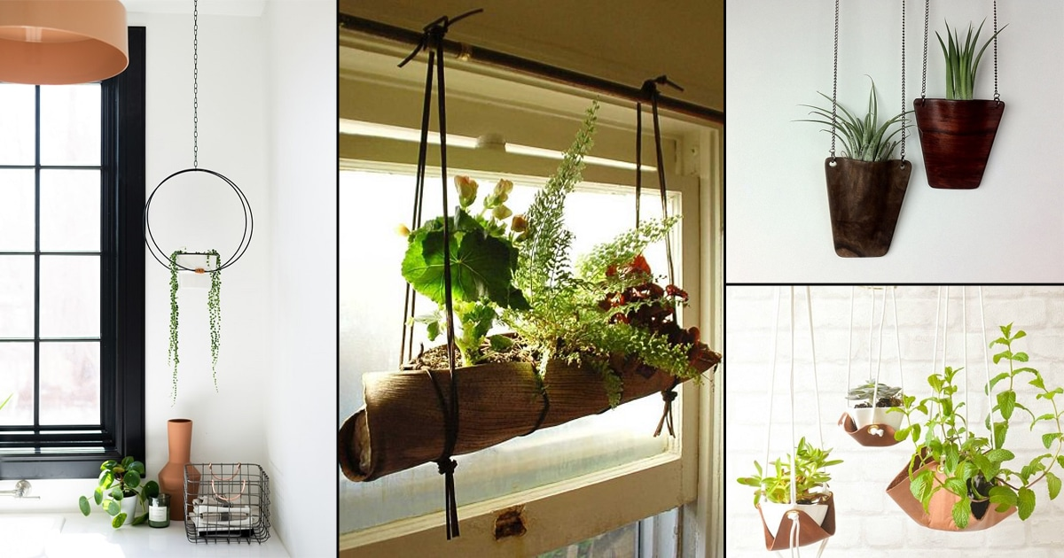 51 Diy Hanging Plants Indoors Ideas