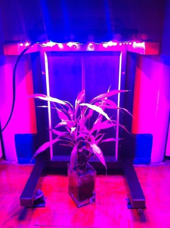 29 Diy Led Grow Light Panels You Can Make At Home