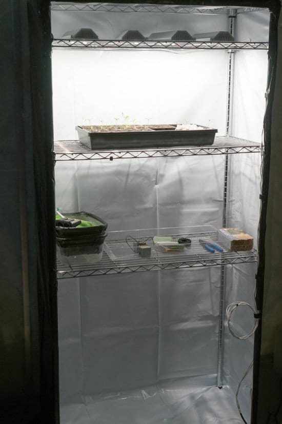 12 Diy Grow Tent Ideas For Indoor Gardeners Balcony