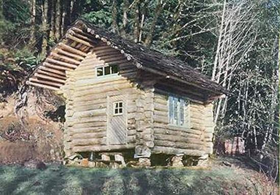 DIY Log Cabin for $100