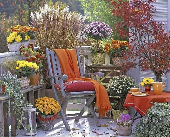 Make your small space garden ready for autumn with these Fall Balcony Garden Ideas!