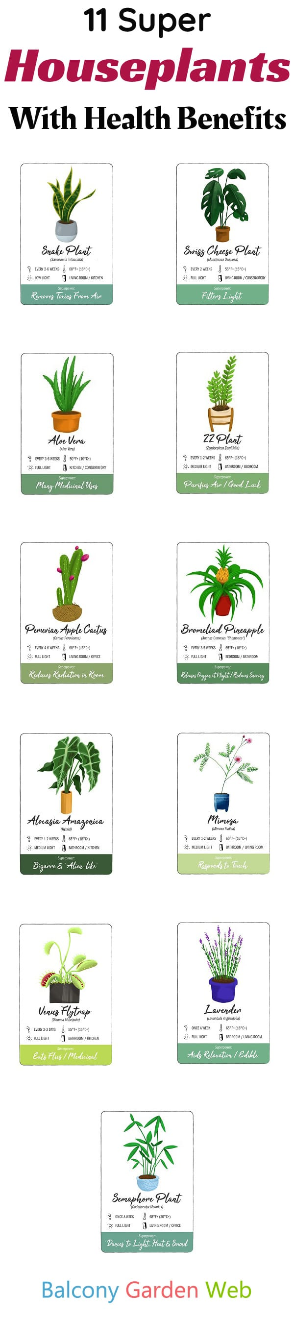 If you're confused about what plants should you grow indoors, then you'll find this list of 11 low-maintenance Houseplants with Health Benefits helpful!