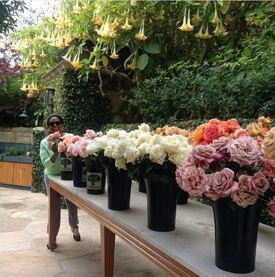 celebrieties that love gardening and growing plants