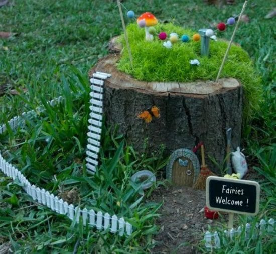 Creative Things to Do with Tree Stumps 3