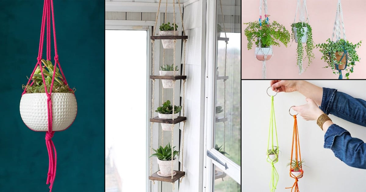 14 Diy Rope Plant Hanger Ideas Hang Indoor Plants With Ropes