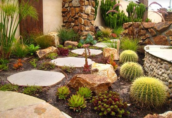 DIY Cactus Garden Ideas 6