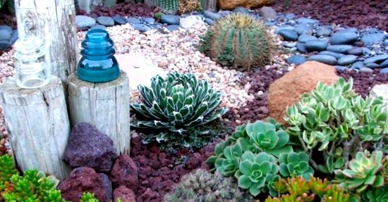 DIY Cactus Garden Ideas 3