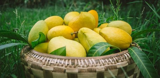 Different Types of Mangoes 5