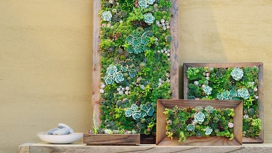 DIY Vertical Gardening Ideas 25