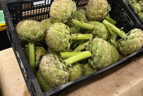 Types of Artichokes 5