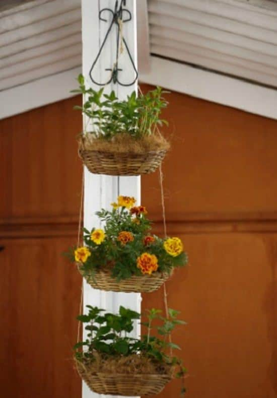 DIY Vertical Gardening Ideas 6