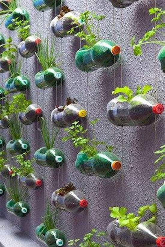 DIY Vertical Gardening Ideas 2