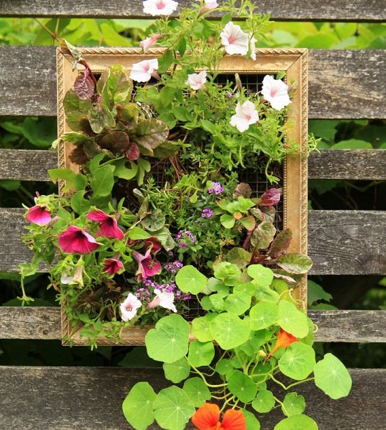 DIY Vertical Gardening Ideas 16