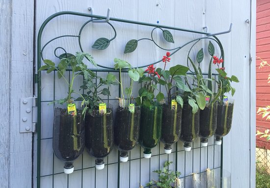 DIY Vertical Gardening Ideas 4