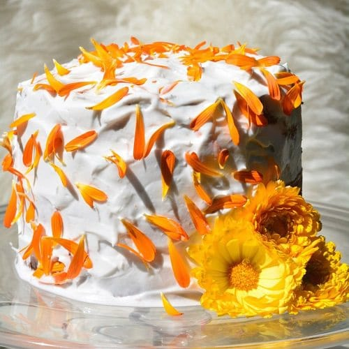 Edible Flowers for Cakes 11